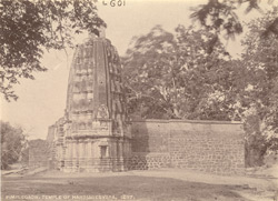 General view of the Harihareshvara Temple, Pimpalgaon (Pimpalgaon Budruk)